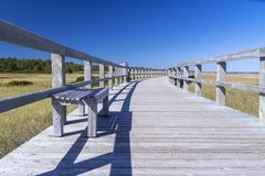 Boardwalk at an Eco-Centre, New Brunswick, Canada Royalty Free Stock Photo