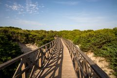 A boardwalk bridge from the beach to natural reserve in Can Picafort. A boardwalk bridge from the beach Playa de Muro to natural reserve in Can Picafort Stock Photography