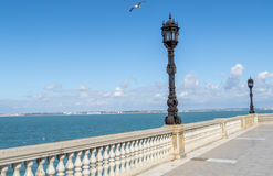 Boardwalk of Cadiz, Genoves Park, Andalusia, Spain Royalty Free Stock Photos
