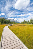 Boardwalk in Canmore, Alberta Stock Images