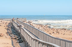 Boardwalk at Cape Cross. Royalty Free Stock Photo
