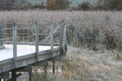 Boardwalk on a cold frosty morning. stock image