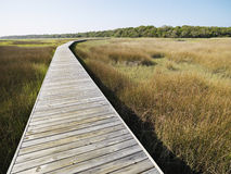 Boardwalk at coastal marsh. Royalty Free Stock Images