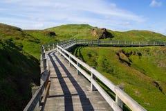 Boardwalk conservation. A boardwalk through countryside on Phillip Island, Victoria, Australia Royalty Free Stock Photos