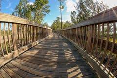 Boardwalk through Cradle Creek Preserve. The nature walk through Cradle Creek Preserve in Jacksonville Beach, Florida is gorgeous stock photography