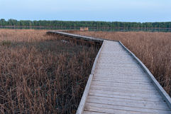Boardwalk Crossing Marsh along Minnesota River Royalty Free Stock Photography