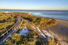 Boardwalk and Dune Vegetation Stock Photography