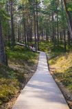 Boardwalk through the dunes to the coast of the Gulf of Riga.  stock image