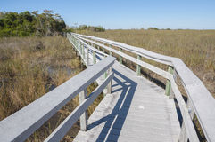 Boardwalk through the Everglades Stock Photos