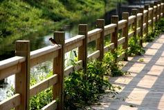 Boardwalk. The boardwalk extends over the green grass Stock Images