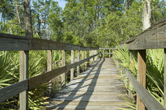 Boardwalk in Florida Royalty Free Stock Photography