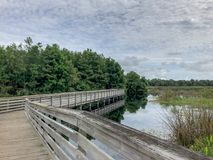 Boardwalk in a Florida Swamp. One elevated path in a Florida swamp in Green Cay nature preserve in Florida royalty free stock photography