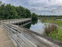 Boardwalk in a Florida Swamp. One elevated path in a Florida swamp in Green Cay nature preserve in Florida royalty free stock photos
