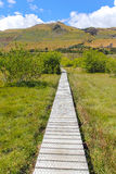 Boardwalk at Glenorchy South Island New Zealand. Amazing Scenery Royalty Free Stock Photography