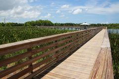 Boardwalk Green Cay Wetlands Stock Images