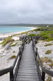 Boardwalk at Hamelin Bay, Western Australia royalty free stock photos