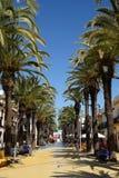 Boardwalk in Isla Cristina. Palm-lined promenade in Isla Cristina Stock Image