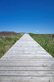 Boardwalk. Isolated Nova Scotia, Canada boardwalk leading out to the bay near Antigonish Stock Images