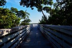 Boardwalk jeziorem Zdjęcie Royalty Free