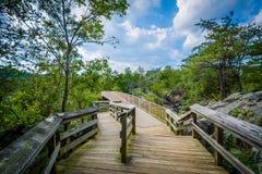 Boardwalk ślad na Olmsted wyspie przy Great Falls, Chesapeake & O, Zdjęcie Stock