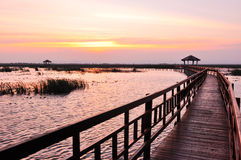 Boardwalk on the lake at sunset Royalty Free Stock Image