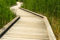 Boardwalk through marsh Stock Photos
