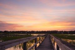 Boardwalk and marsh Royalty Free Stock Image