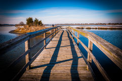 Boardwalk through marshes at Assateague Island National Seashore, MD Royalty Free Stock Images