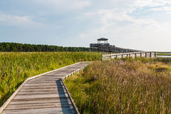 Boardwalk Through Marshland Leading to Bodie Island Lighthouse Observation Point stock image