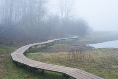 Boardwalk in the mist Stock Images