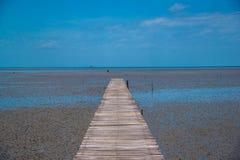 Boardwalk morze: Laem Phak Bia Królewski projekt, Phetchaburi Tajlandia Obraz Stock
