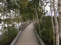 Boardwalk nad wodą Zdjęcia Royalty Free
