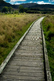 Boardwalk in New Zealand Royalty Free Stock Image