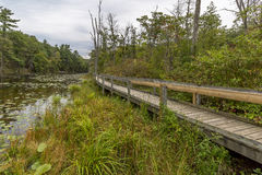 Boardwalk Next to a Slow Meandering River Royalty Free Stock Photography