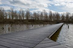 Boardwalk over the drowned forest in Schalkwijk. Wooden pathway over the drowned forest in Schalkwijk near Houten in the Netherlands. The forest is drowned to Royalty Free Stock Image