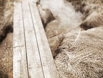 Boardwalk over river Royalty Free Stock Image
