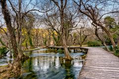 Boardwalk over the water. Boardwalk over river Krka in National park Krka. part of the shallow part of the river where trees are growing from the river bed Stock Photography