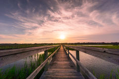 Boardwalk over salt marsh at sunset Stock Photo