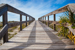 Boardwalk over sand dunes Royalty Free Stock Photo