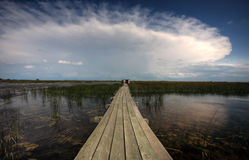 Boardwalk over water at Last Mountain Stock Images