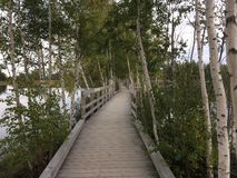 Boardwalk over the water Royalty Free Stock Photos