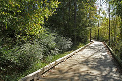 Boardwalk over wetlands Stock Photography