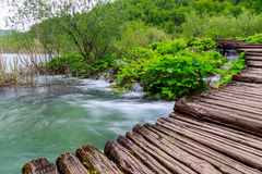 Boardwalk in the park Plitvice lakes Royalty Free Stock Photos