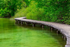 Boardwalk in the park Plitvice lakes Stock Image