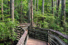 Free Boardwalk Path Royalty Free Stock Image - 59771756