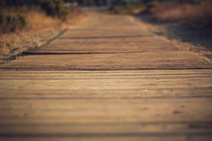 Boardwalk path Royalty Free Stock Photos