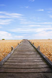 Boardwalk Pebble Beach Romney Marsh Stock Photo