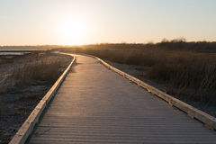 Boardwalk perspective. Boardwalk with a winding or curved path with a horizon perspective. Sunrise or sunset on the distance in the sky with no clouds Royalty Free Stock Images