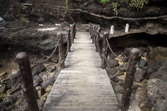 Boardwalk,plank bridge Royalty Free Stock Photos