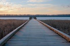 Boardwalk and Platform in Wildlife Refuge Stock Photo